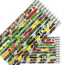 Farm Pencils - NEW