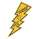 """18"""" Lightning Bolt"""